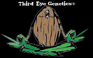 Third Eye Genetics