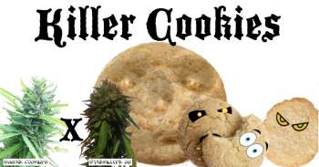 Killer Cookies (Picture from MadCats_Backyard_Stash..)